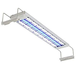 NICREW Aquarium Beleuchtung, LED Beleuchtung für Aquarium, LED Beleuchtung für Bepflanztes Aquarium LED-Lampe Weiße und Blaue für Fisch Aquarien 16W 50-60 cm