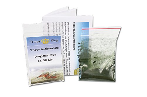 Triops longica udatus Starter Set Plus aprox. 50Huevos Alemán