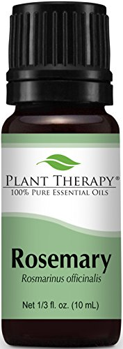 Plant Therapy Rosemary Essential Oil. 100% Pure, Undiluted, Therapeutic Grade. 10 Ml...