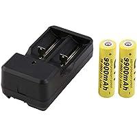 Sanzhileg 2x18650 9900 mah Batería Recargable con Cargador Universal 3.7V 18650 Baterías de Litio de Ion de Litio Baterias con Cargador de Enchufe de EE. UU.