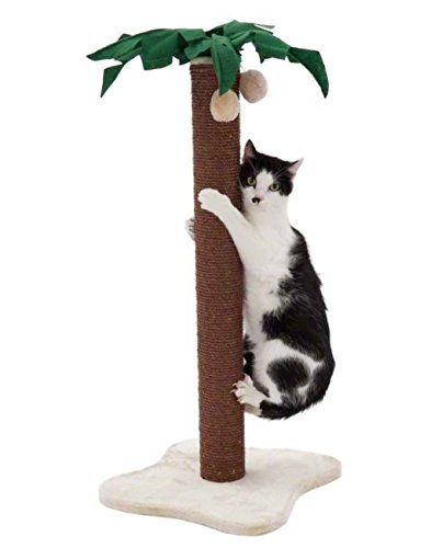 Coconut Palm Cat Scratching Post - with Dark Brown Sisal Covered Trunk and Plush-Covered Base - Adds A Touch of Tropical… 1