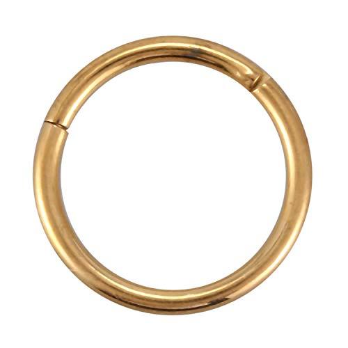 SODIAL Titan Metall Septum Klicker Nasenring Scharnier Segment Ohr Helix Tragus Ring Hoop Golden G