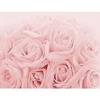 Suchergebnis Auf Amazon De Fur Tapeten Rosa Tapeten Malerbedarf