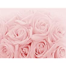 Suchergebnis auf Amazon.de für: vlies fototapete rose