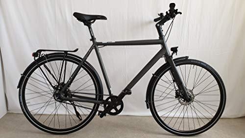 Rabeneick TS5 Shimano Nexus 8-Gang Trekking Bike 2020 (28