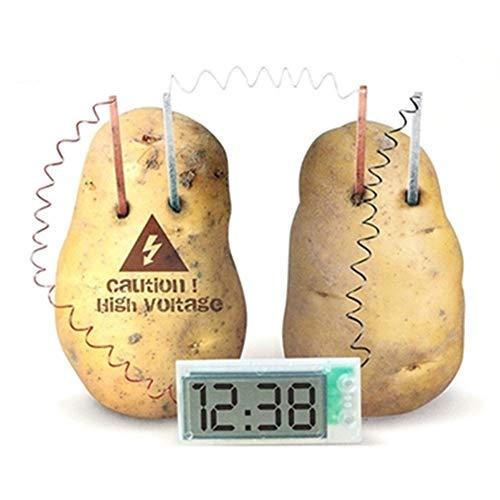 Kreative Kartoffel Uhr Umweltschutz DIY Technologie Kleine Produktion Physikalische Experiment Ausrüstung Obst Und Gemüse Obst Power Generation Clock