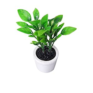 1/12 Grünpflanze in weißem Topf Miniatur Puppenhaus Garten Zubehör