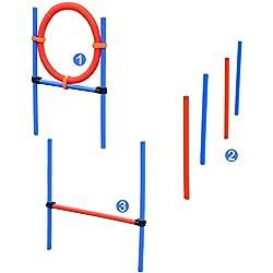 Set Agility Entrenamiento Perros Agilidad Salto Polo Tunel Equipo Azul Rojo NUE