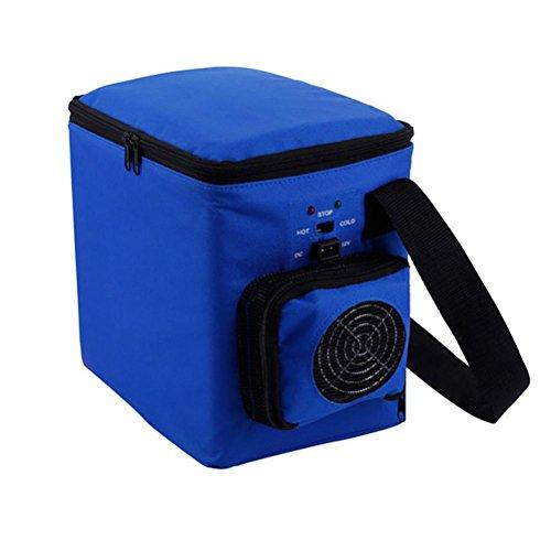 Preisvergleich Produktbild RUIRUI 6L lässig Oxford Taschen Auto Kühlschrank Minikühlschrank Halbleiter elektronische Hot-Box
