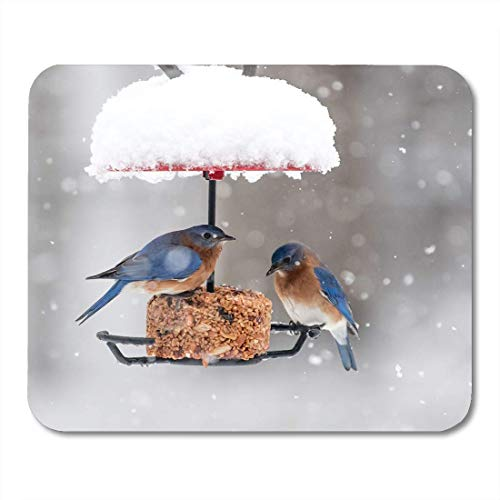 Deglogse Gaming-Mauspad-Matte, Eating Blue Winter Bluebirds on Bird Feeder During Snowfall Mouse Pad, Desktop Computers mats Bluebird Feeder