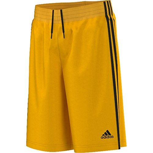 Pantaloncini da Baseball per uomo