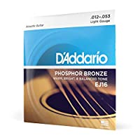 D'Addario EJ15 Phosphor Bronze Acoustic Guitar Strings Light, 12-53 EJ16