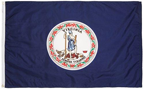 Valley Forge Flagge, hergestellt in Amerika, 91 x 152 cm, Nylon Virginia State Flag 0 4' x 6' Virginia -