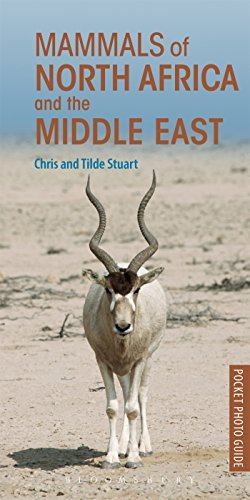 Pocket Photo Guide to the Mammals of North Africa and the Middle East by Chris Stuart and Tilde Stuart (2016-03-24)
