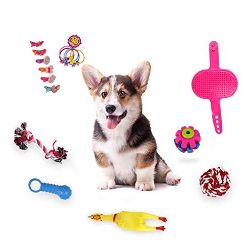 cokil Hund Molar Biss-resistente Spielzeug Kit 16Pcs Pet Supplies Spielzeug - Resistent Kit
