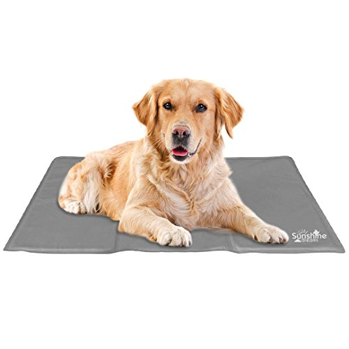 Pet-kiste Groß Reise (Sunshine Träume großer Hund Kühlmatte (Grau) | Groß Cool Pad (90 cm x 50 cm) hält Ihr größere Haustiere Cool & Ruhe | Cooling Pads für Hunde und Katzen)