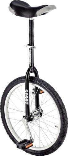 """Fishbone Einrad 20"""" Luxus Modell sw"""