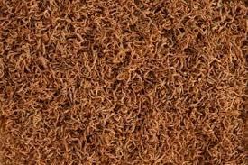 Rote getrocknete Mückenlarven FD , Bloodworms, Naturfutter, Fischfutter 1.000ml