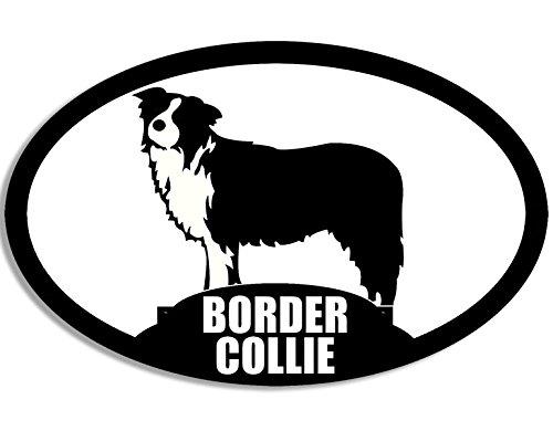 ovale-border-collie-razza-cane-decalcomania