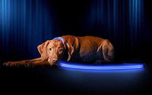led-recargable-por-usb-correa-de-perro-disponible-en-6-colores-y-2-tamanos-hace-que-su-perro-visible