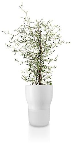 Eva Solo Pot de Fleurs, Système d'Auto-Irrigation, Niveau d'Eau Visible, Ø 13 cm, Verre/Céramique, Chalk White, Blanc, 568147