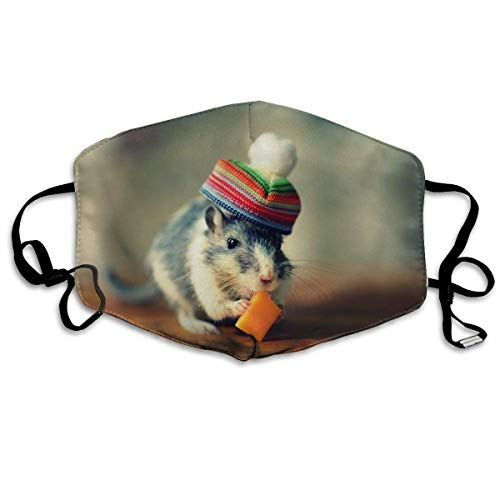 Mask Cute Hamster Funny Illustration Polyester Anti-dust Masks Washed Reusable Face Mask for Outdoor Cycling ()