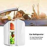 Mini refrigerador Nevera eléctrica fría y cálida, Refrigerador de Doble Voltaje para automóvil...