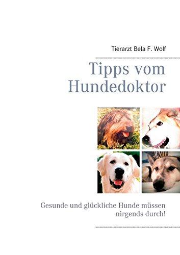 Tipps vom Hundedoktor: Gesunde und glückliche Hunde müssen nirgends durch!