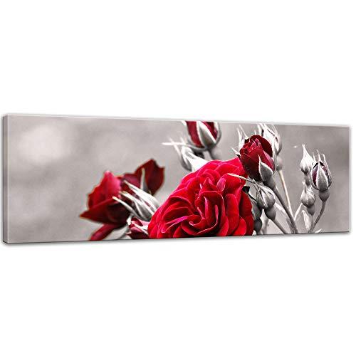 Keilrahmenbild - Rosenrot - Bild auf Leinwand - 120 x 40 cm - Leinwandbilder - Bilder als Leinwanddruck - Pflanzen & Blumen - Natur - Rosenstrauch vor schwarz weißem Hintergrund (Bild Weißem Hintergrund)