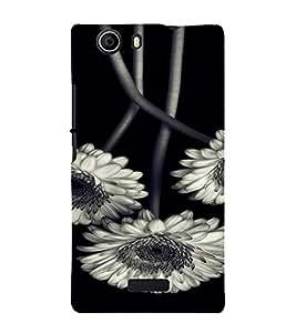 PrintVisa Flower Design 3D Hard Polycarbonate Designer Back Case Cover for Micromax Canvas Nitro 2 E311