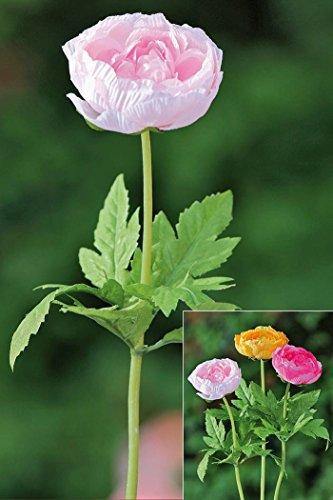 Kunstblume Ranunkel Kunstseide rosa Seidenblume L45