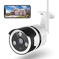 Cámaras de Vigilancia WiFi Exterior, Netvue FHD 1080P Cámara Seguridad Compatible Alexa, Impermeable IP66, Ethernet y WiFi con Versión Nocturna Audio Bidireccional Detección de Humano Movimiento