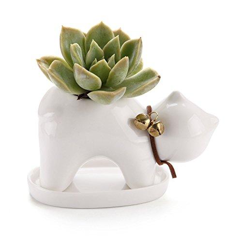 comsaf vaso per pianta grassa vaso di piante bianco ceramica gatto, fioriere di cactus contenitori vasi di fiori decorativo del desktop davanzale decorativo del desktop davanzale regalo di natale