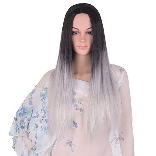 LIHY Medium Färben Perücke, Farbverlauf Lange Glatte Haare Cosplay Perücke (Farbe : Gray) (Medium Blonde Haare Färben)