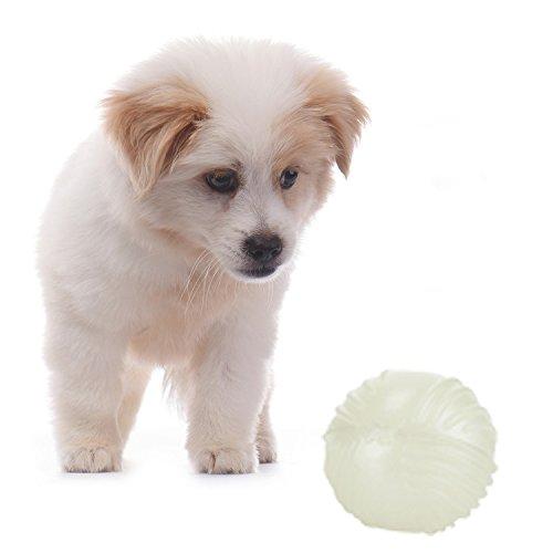 Hund Glow Ball Spielzeug (Pet Chew Spielzeug TPR Ball Hund Spielzeug Ball Glow in der Dunklen Ball für Haustier Hunde Katzen)