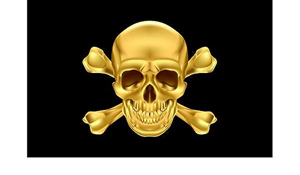 Michael Rene Pflüger Barmstedt 5 4 X 8 4 Cm Hxb Autoaufkleber Pirat Goldfarben Schwarz Totenkopf Skull Piratenaufkleber Sticker Aufkleber Fürs Auto Motorrad Auto