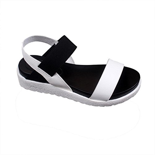 feiXIANG frauen sommer sandalen damen Flip Flops outdoor sport Freizeit  schuhe faccd5fcf6