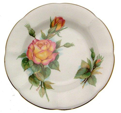 Wheatcroft roses Roslyn 15,9cm Peace Teller Wheatcroft Rosen