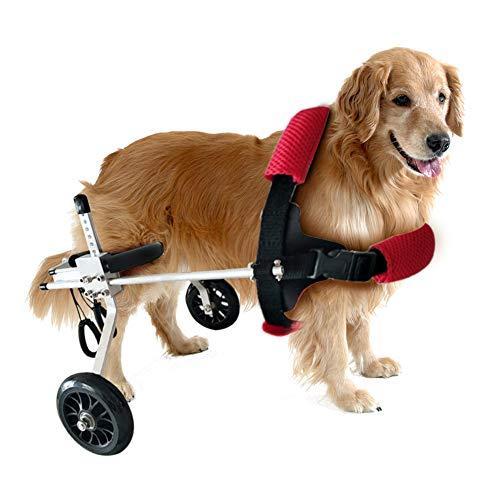PET HOUND Rollstuhl Hunderollstuhl Gehhilfe Hundegehilfe Rollwagen Hunderollwagen Haustier-Rollstuhl-Hinterbein-Heide-Sorgfalt-Katzen-Zusätze Kleine Justierbare Aluminiumlegierung des S