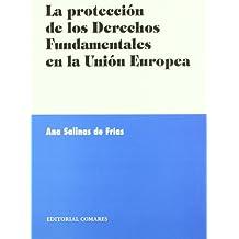 La protección de los derechos fundamentales en la Unión Europea