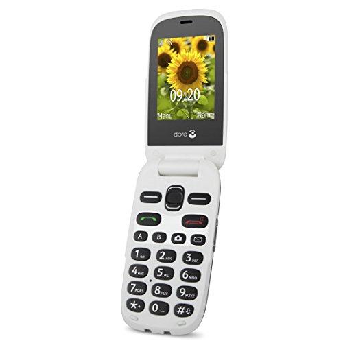 Doro 6030 - Teléfono móvil DE 2.4' (SIM única, recordatorio de Eventos, GPRS,...
