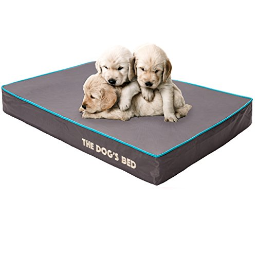 the-dogs-bed-premium-orthopedic-memory-foam-waterproof-dog-beds-many-colors-sizes-helps-ease-pain-of