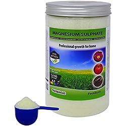 Nortembio Magnesiumsulfat Heptahydrat 1,2 kg, Bittersalz, Dünger universell, Umweltfreundliches Düngemittel, für Garten- und Zimmerpflanzen. Entwickelt in Deutschland.