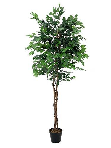 artplants – Kunstpflanze Ficus-Benjamini mit 1115 Blättern, grün, 150 cm – Künstlicher Ficus/Deko Pflanze