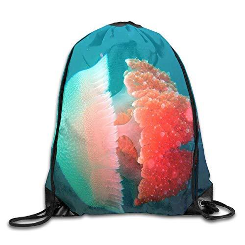 uykjuykj Tunnelzug Rucksäcke, Drawstring Bag Earth Science Rucksack for Gym Hiking Travel Designer Color 07 Lightweight Unique 17x14 IN