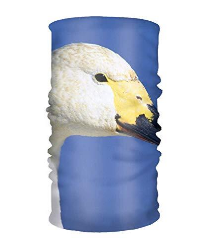 Stirnband Animal Tundra Swans Helm Liner Feuchtigkeitstransportierende Mikrofaser für Yoga, Wandern & Reisen