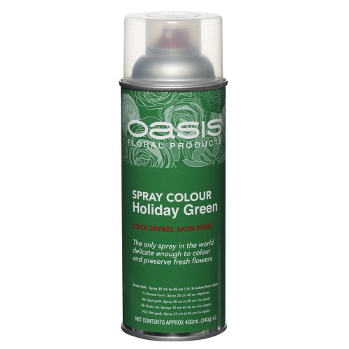 floral-spray-paint-colour-400ml-aerosol-can-holiday-green