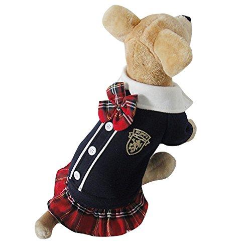 Hundekleidung Bindung Schulmädchen Anzug LNAG , m (College Engel Kostüm)
