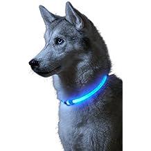 23ad1d427144 Auraglow Collar de Seguridad para Perros con Luz Super Brillante LED  Intermitente de Alta Visibilidad