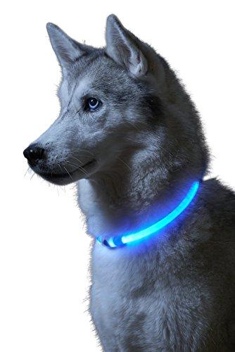 Auraglow Collar de Seguridad para Perros con Luz Super Brillante LED Intermitente de Alta Visibilidad